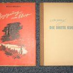 Zwei Romane bei Lied der Zeit